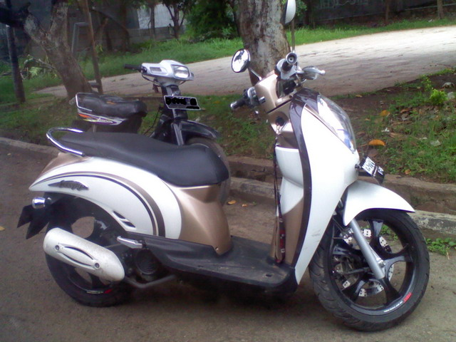 nice_scoopy